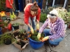 residents gardening in the garden area